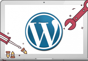I will provide wordpress website maintenance services for your wordpress and woocommerce